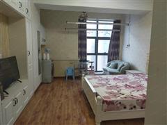 金田湖畔春天 出售1室1厅1卫 45平 60万